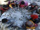 விருதுநகரில் பட்டாசு ஆலையில் வெடி விபத்து; 3 பேர் பெண்கள் உட்பட 5 பேர் உயிரிழப்பு
